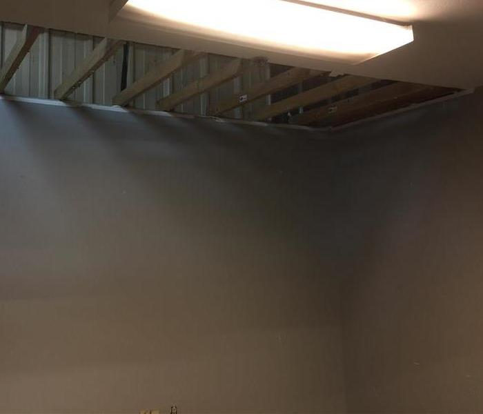 Commercial Mold Remediation in Brandon, MS After