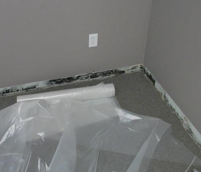 Commercial Mold