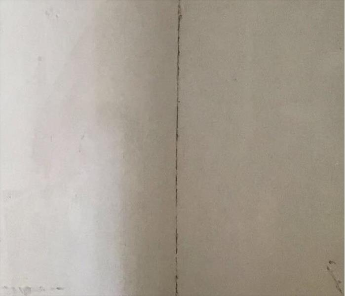 Mold on the walls of a bedroom