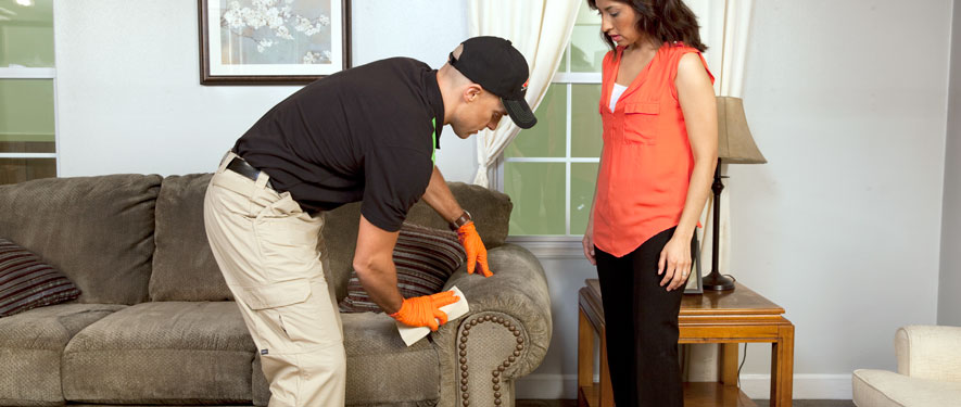 Brandon, MS carpet upholstery cleaning